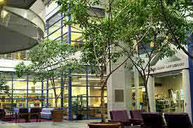 The Schulich School of Law